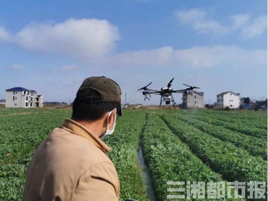 """远程指导、无人机飞防……看三湘大地不一样的""""春耕图"""""""