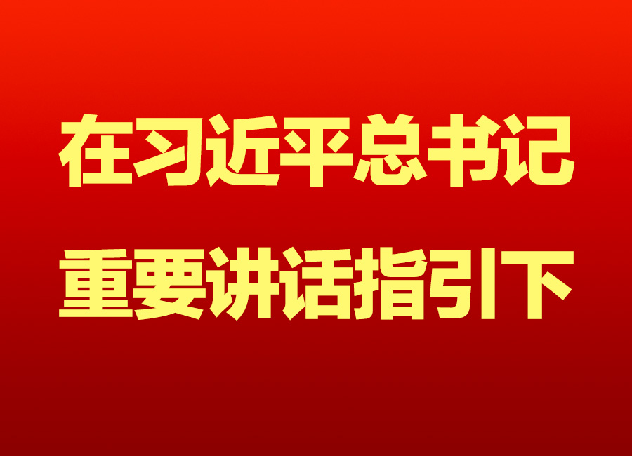 【在习近平总书记重要讲话指引下】抢抓时节忙春耕 稳住农业基本盘
