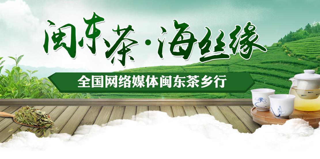 2016全国网络媒体闽东茶乡行