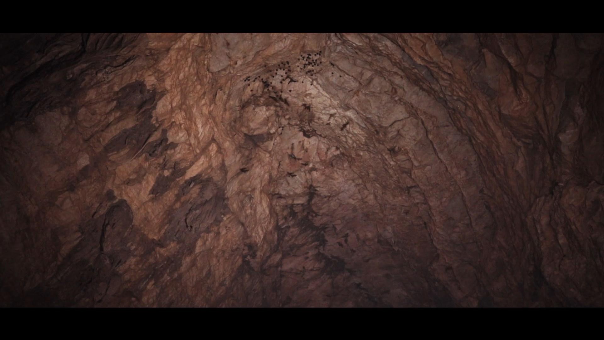 第五集:槟榔谷 现实版鬼吹灯--探洞!棺材?