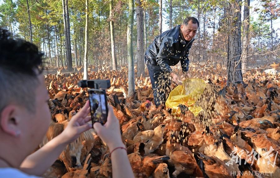 短视频助力农产品销售 新湖南www.hunanabc.com