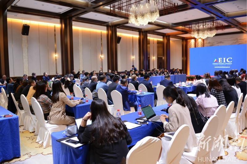 对非轻工业投资对接会在湘举办 新湖南www.hunanabc.com