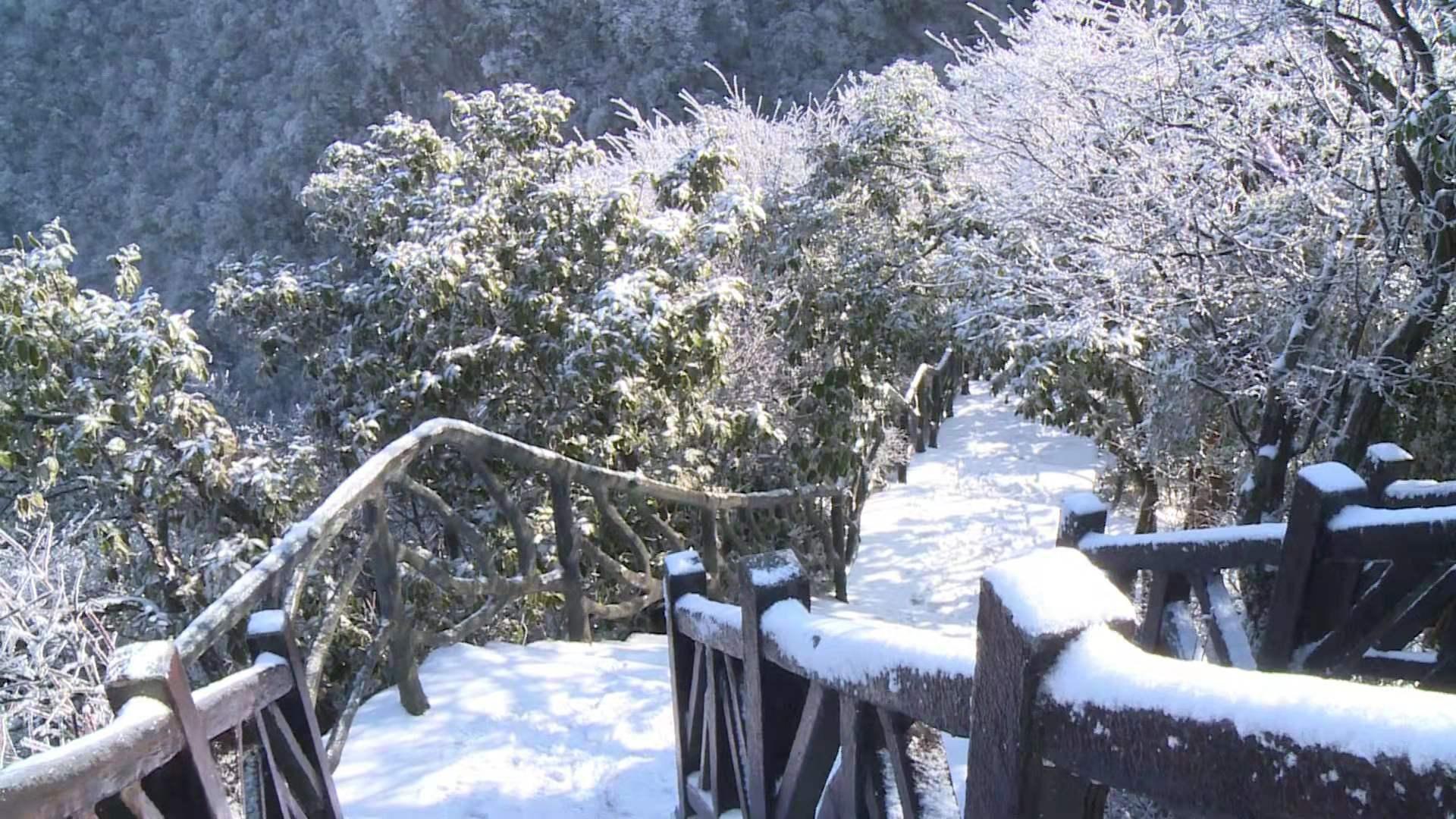 张家界天门山迎今冬首雪瑞雪、雾凇、云海三景交融