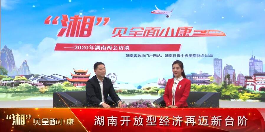 湖南省商务厅党组副书记谭平:湖南开放型经济再迈新台阶