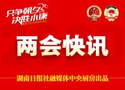 湖南省十三届人大三次会议举行第三次全体会议 补选省人民检察院检察长、省人大常委会委员