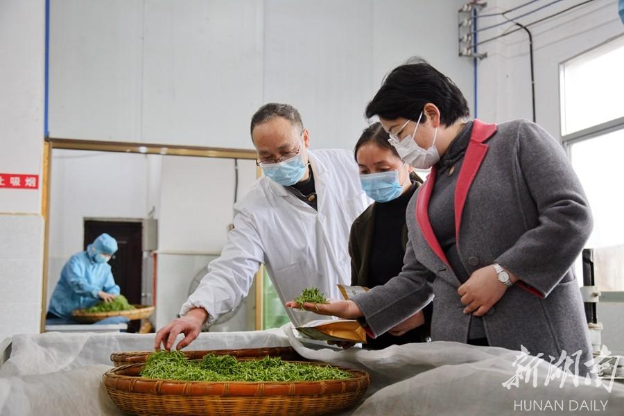 驻点帮扶促发展 新湖南www.hunanabc.com