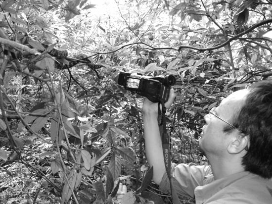 口味蛇还能吃吗?看着可怕的蛇对维护生态有着重要的作用 新湖南www.hunanabc.com