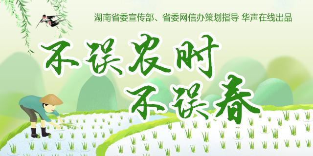 【专题】不误农时不误春