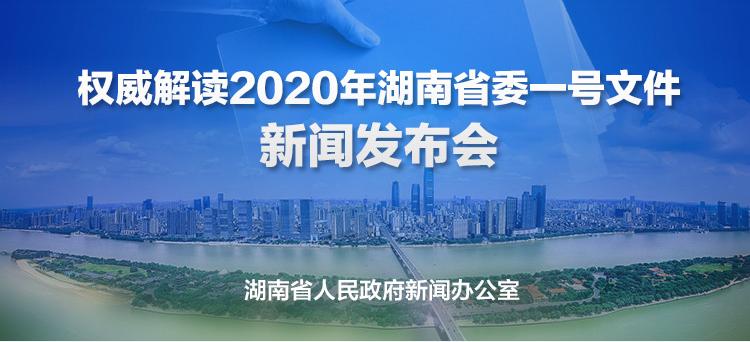 直播回顾>>2020年省委一号文件新闻发布会