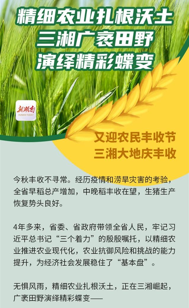 精细农业扎根沃土,三湘广袤田野演绎精彩蝶变